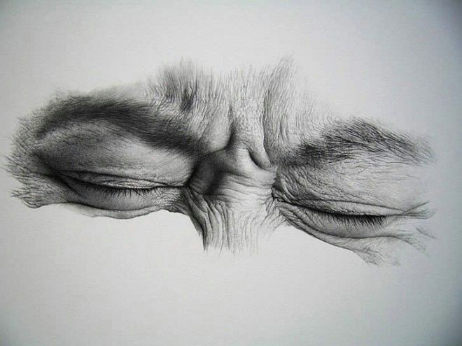 30 realistic pencil drawings and drawing ideas tips for beginners