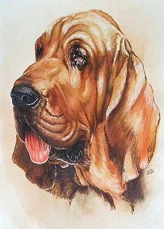 2 Dogs Drawing Die 78 Besten Bilder Von Art Dog Ii Drawings Drawings Of Dogs