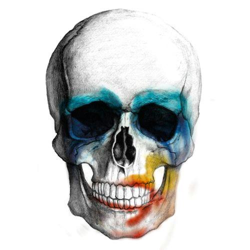 lady gaga artpop skull 3