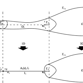splitting of the domain of analysis to derive the 3d 1d 0d coupled model