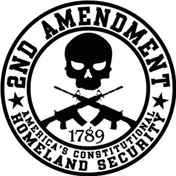 amazon com 2nd amendment homeland security round bumper sticker automotive