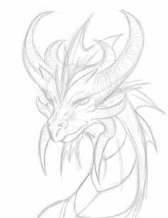 dragon head drawing google search dragon head drawing a drawing drawing reference