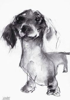 dachshund painter valerie davide dachshund tattoo dachshund funny dachshund art dachshunds