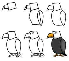 drawing a cartoon eagle