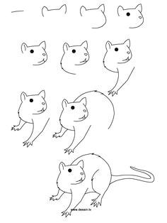 drawing rat learn how to draw a rat with simple step by step instructions