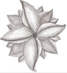 flower pencil art