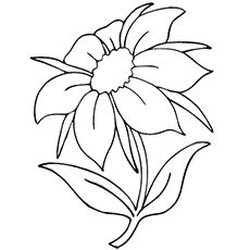 the jasmine coloring pages coloring books coloring pages for kids kids coloring colouring