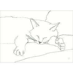 personalised pet portrait in mount contour drawingcat
