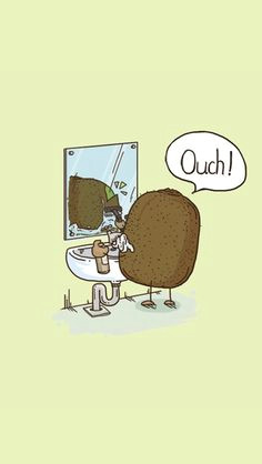 kiwi fruit illustration humor funny cute kiwi cute pictures shaving