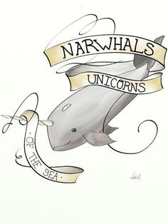 daily drawing narwhals cute narwhal kawaii narwhal wale unicorns and mermaids