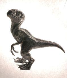 aluminium baby raptor