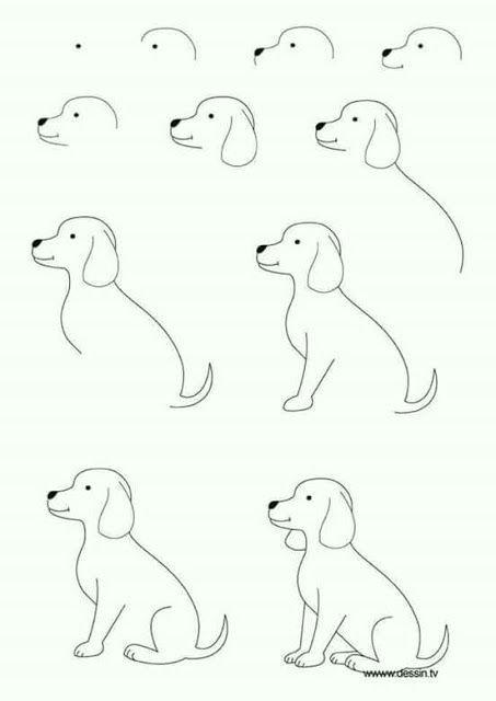 ca mo dibujar gatos y perros el ca mo de las cosas