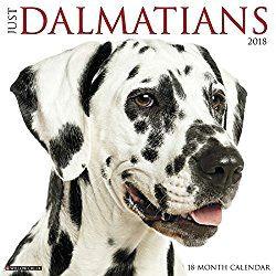 dalmatian calendars 2018 just dalmatians dog breed calendar
