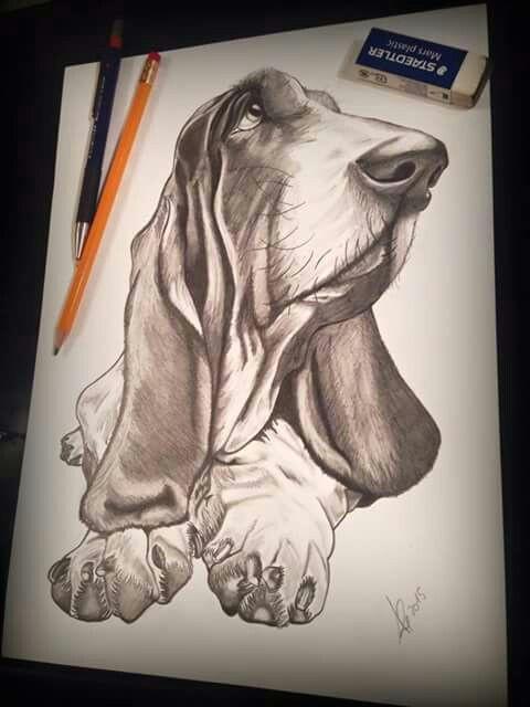 basset basset hound dog beagle bloodhound dog art poodle dog lovers