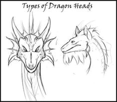 how to draw a dragon head step 1 dragon head drawing drawing guide drawing