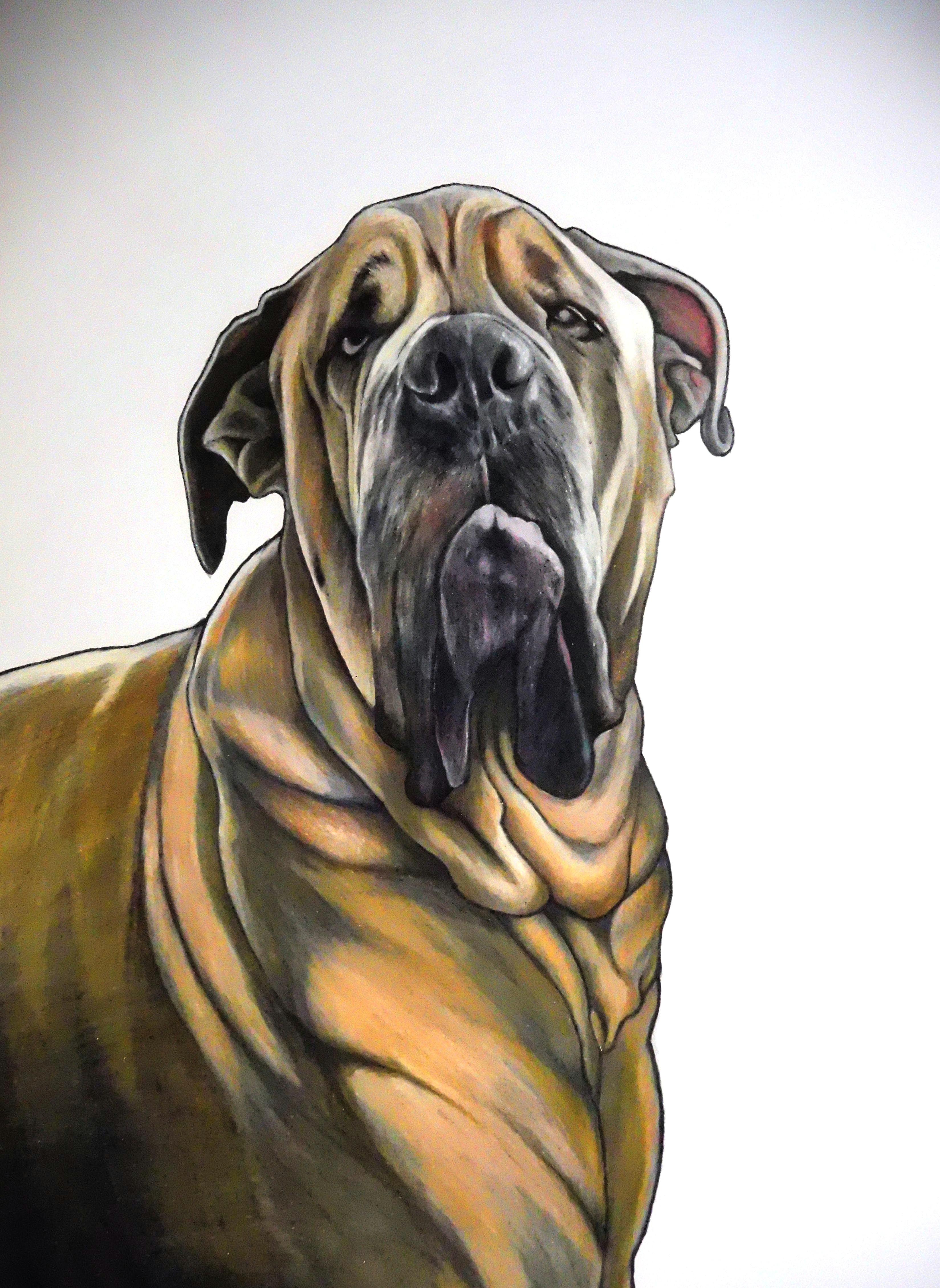 mastiff drawing this is nubbie a k a loki a k a the o b original baby