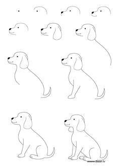step by step lab dog drawing tutorial