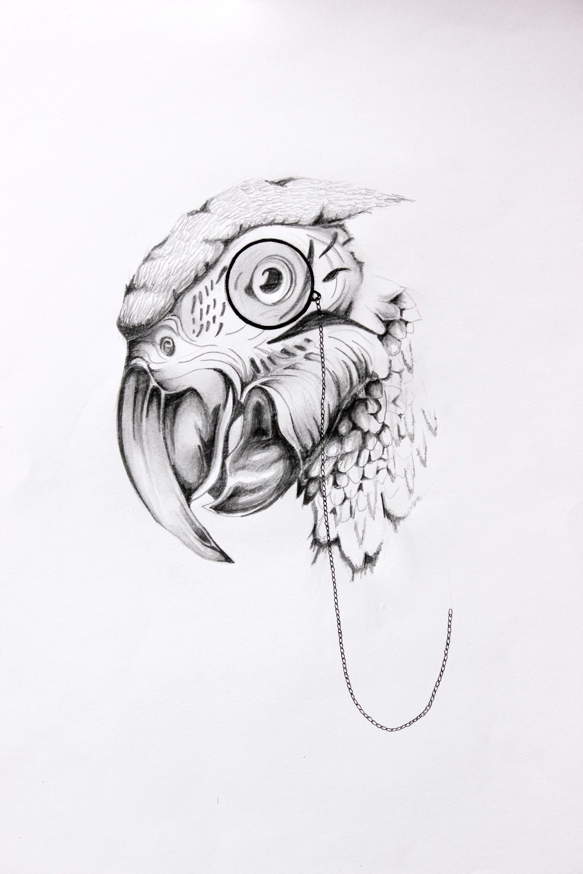 parrot eye www beboris co uk ink illustration artwork