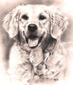 art inspiration drawing dog barking animal drawings pencil drawings drawing animals pet portraits dog art dog sketches art van