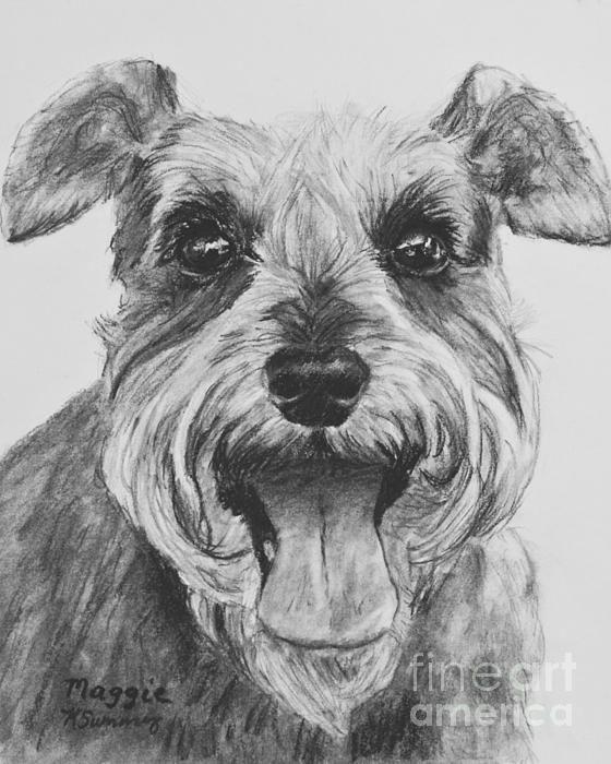 schnauzer dog print drawing