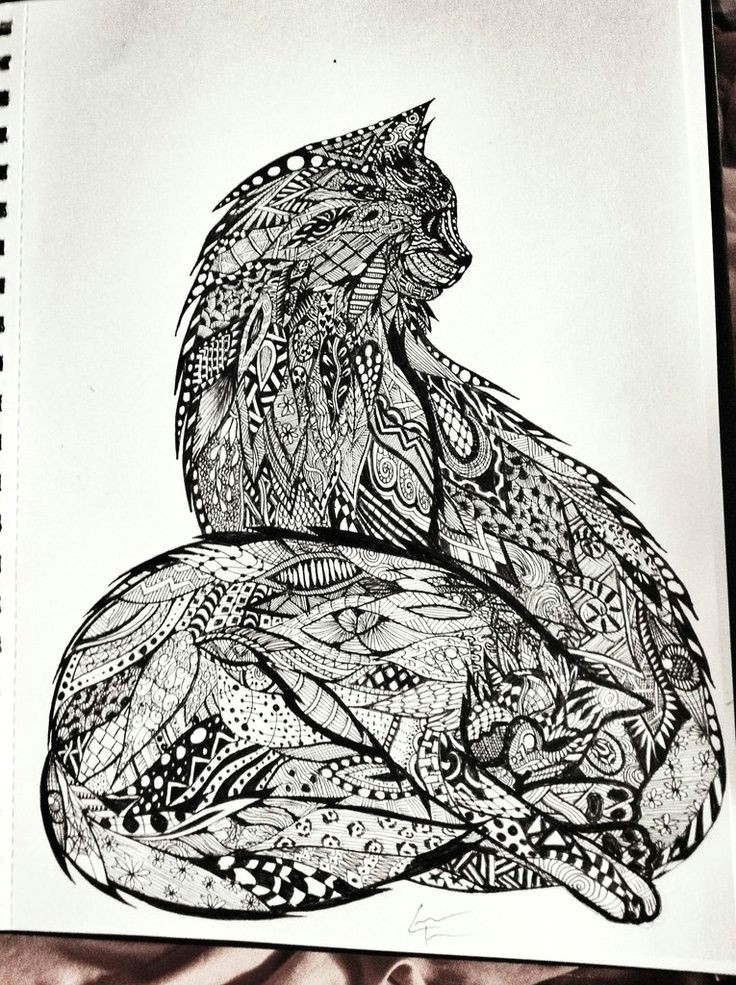 art cats doodle zentangle zentangle imgur zentangle cats art zentangle