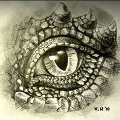 graphite pencil drawing dragon s eye while many adolescent girls may be attracted to the