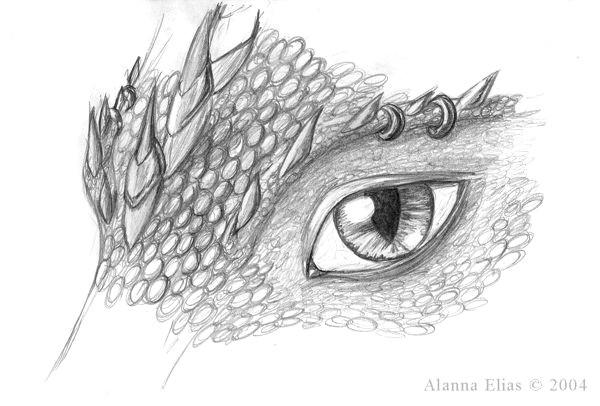 drawn eye dragon 6