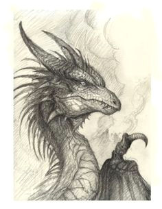 the article features both realistic and cartoon forms of dragons like flying dragons dragons with knights and fire breathing dragons