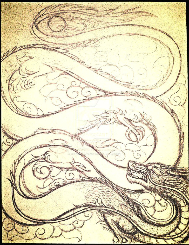 chinese dragon sketch by primeval wings