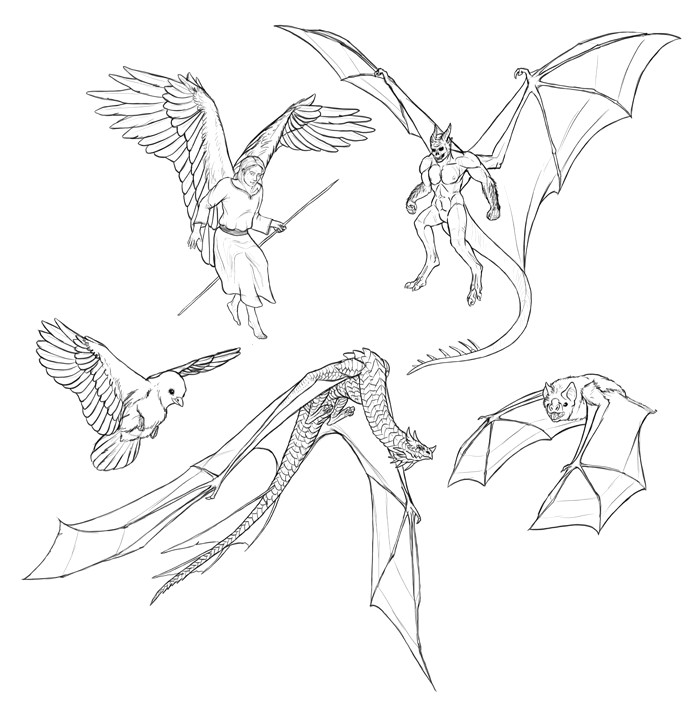 how to draw wings step by step 9