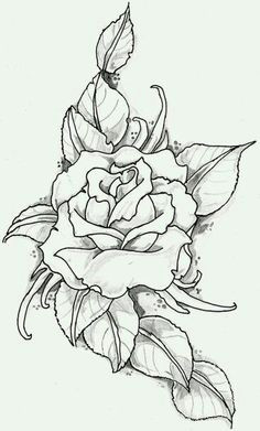 Draw A Rose for Me Rose Outline Google Search Outlines Drawings Art Flowers