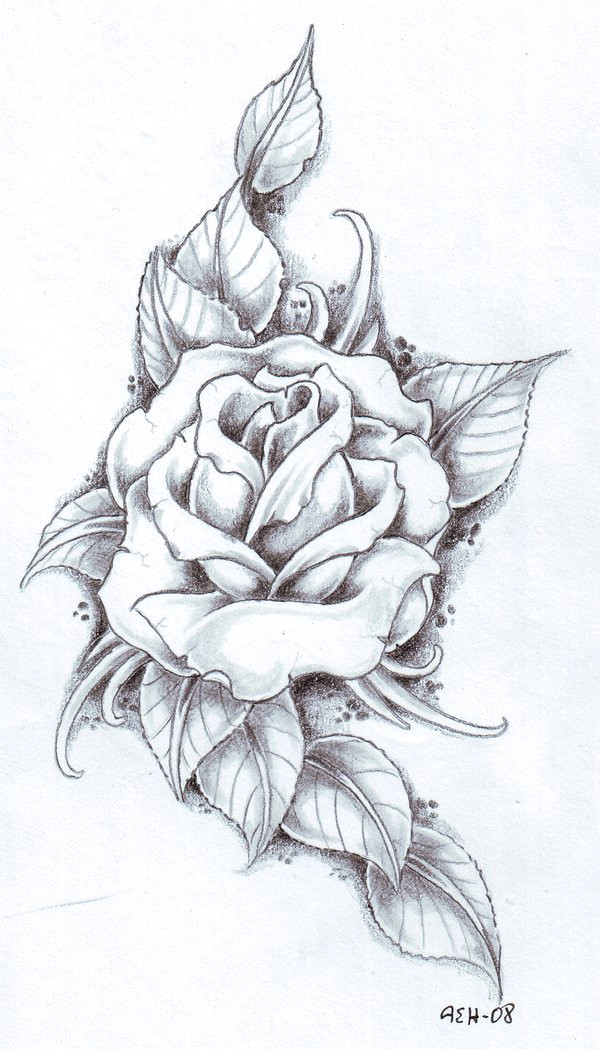 rose with banner best of drawings roses s s media cache ak0 pinimg originals 89 0d 6b