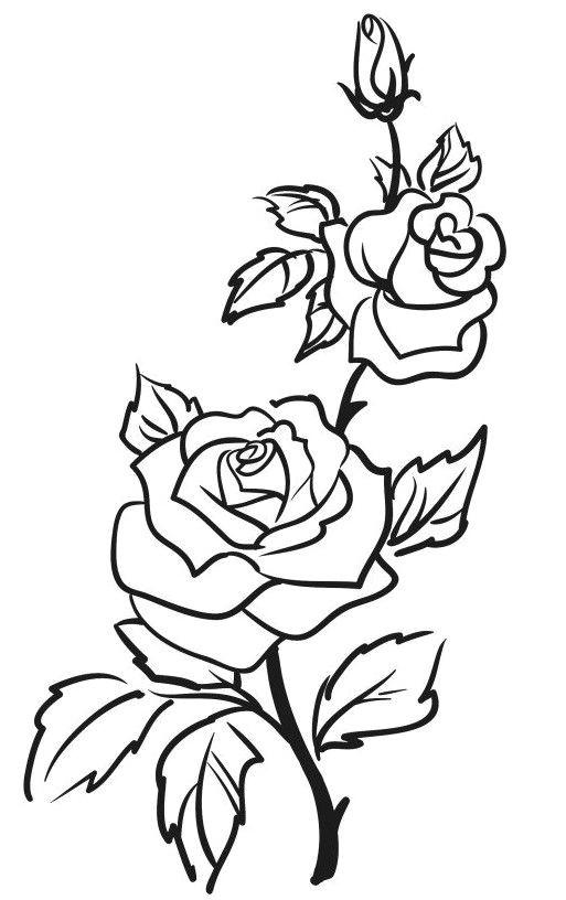 rose outline drawing outline art rose drawing simple rose outline tattoo rose