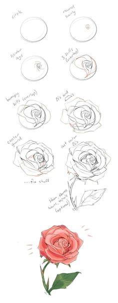 how to draw roses kalligraphie blumen zeichnen ideen furs zeichnen maltechniken malerei