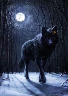 wolf tier wolf fantasy wolf wolf moon wolf spirit werewolves wolf