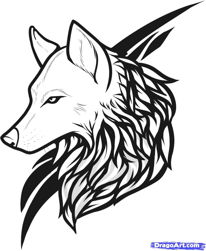 draw wolf tattoo drawing and coloring for kids