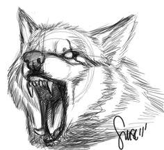 wolf growl sketch