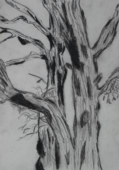 done outside art at woodstock drawing and painting trees arts and crafts diy