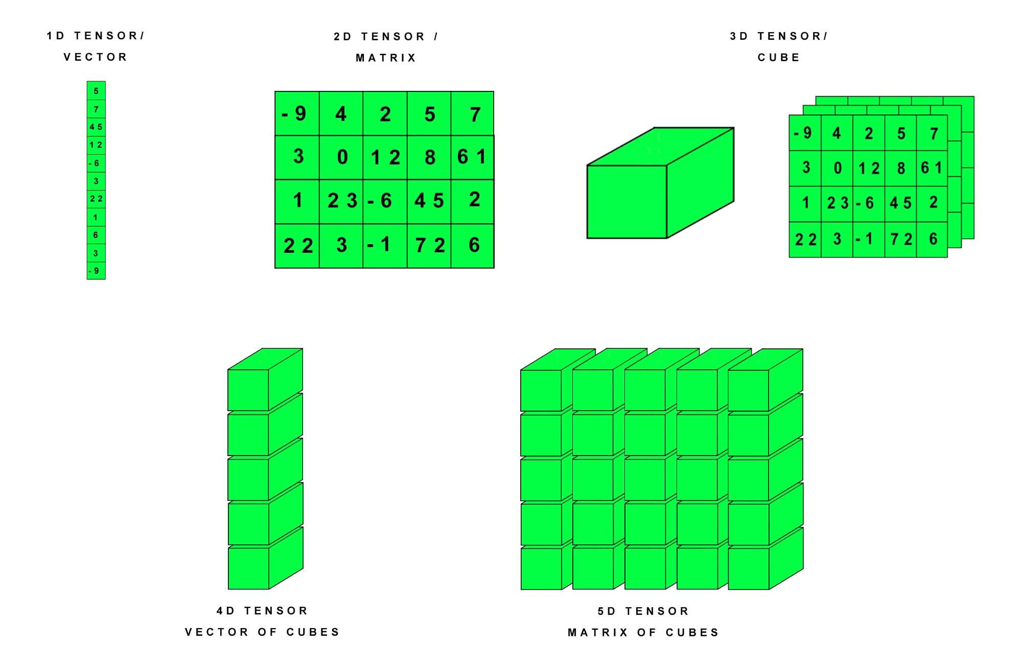 0d tensors scalars