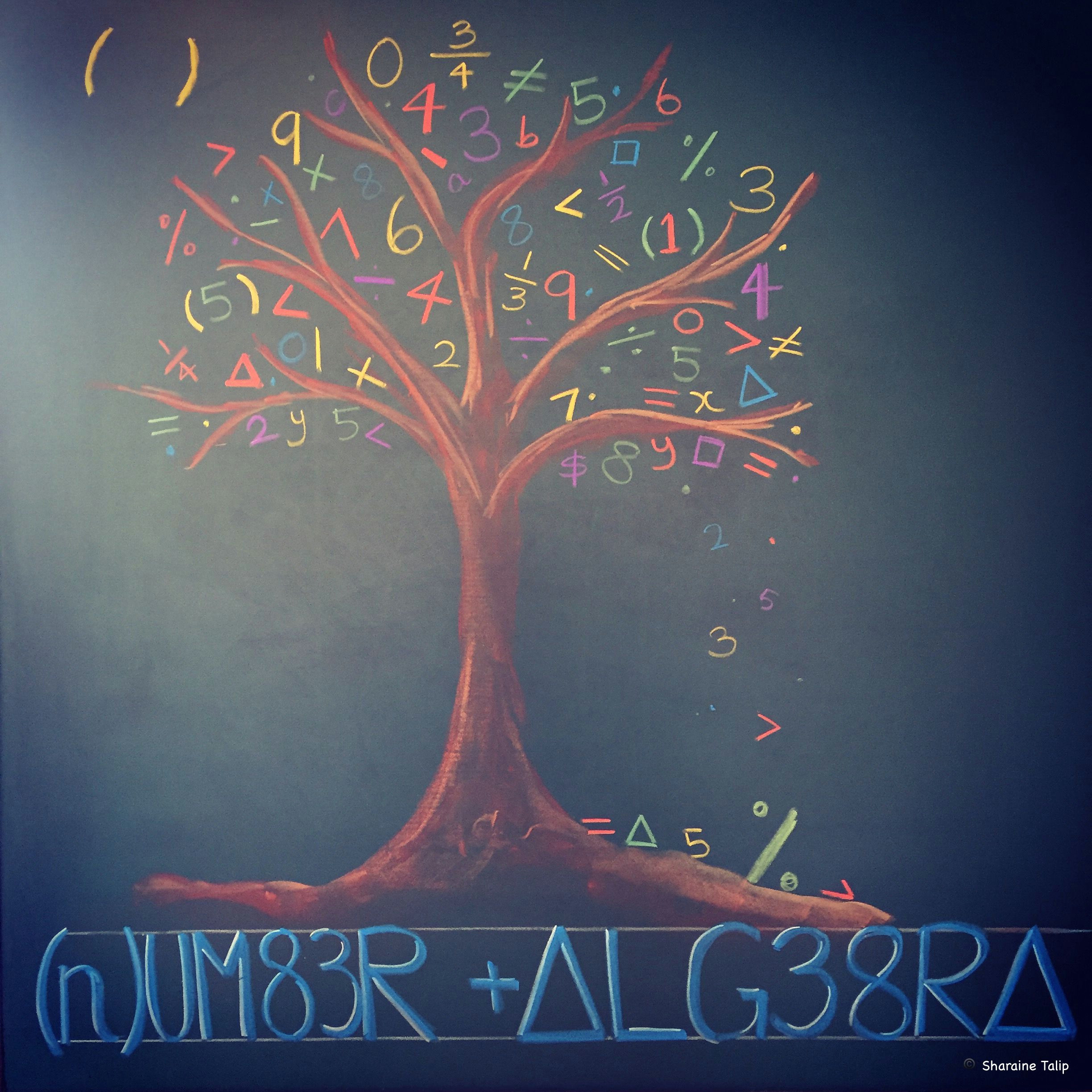 number algebra main lesson chalkboard drawing 6th grade waldorf steiner education
