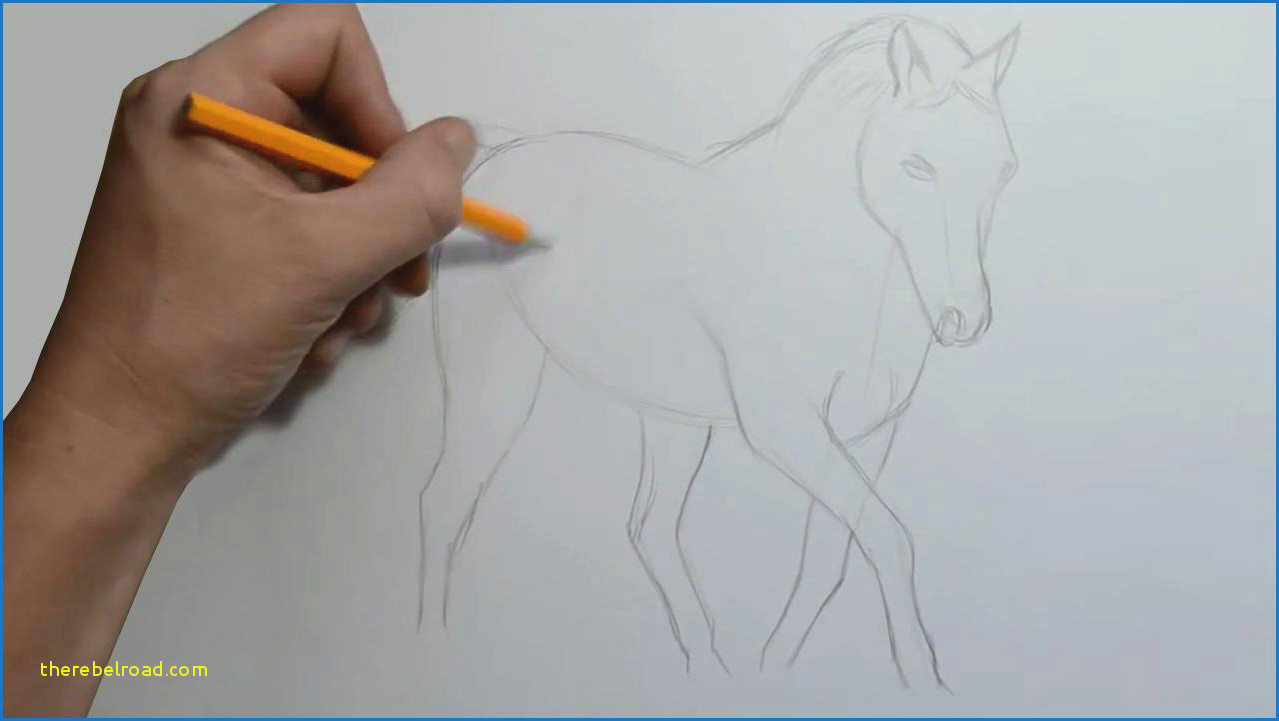 how to draw a horse step by step 1 horses pinterest types how to draw