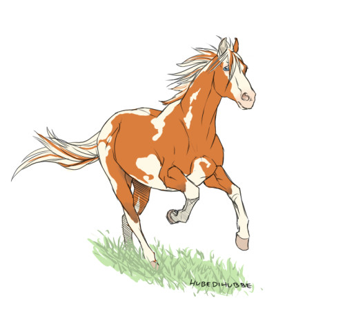aerick horse