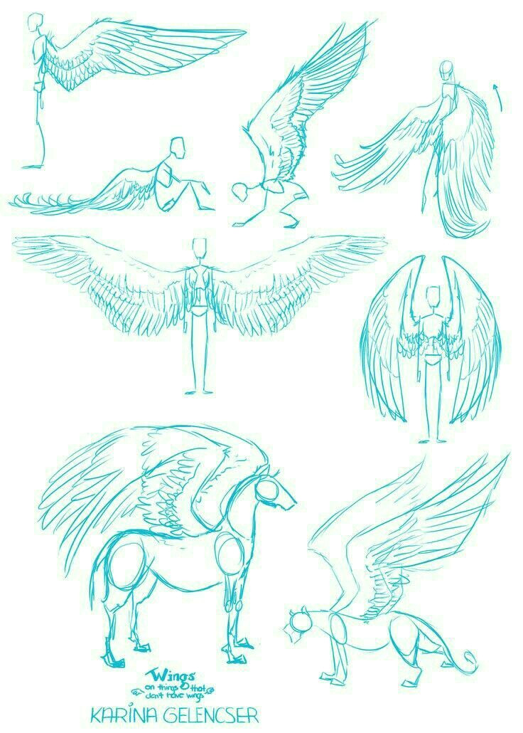 how to draw horses how to draw angels how to draw wings how
