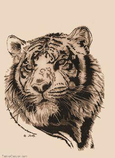 tiger tattoos 12092 tiger tattoos free download tattoo 27658