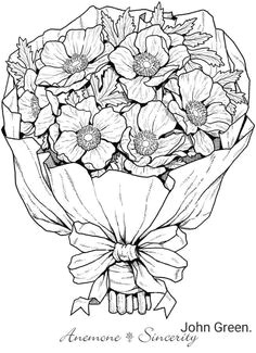 bunch of anemones natalie capps a flower line drawings