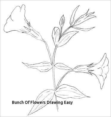 Drawing A Bunch Flowers Bunch Of Flowers Drawing Easy S S Media Cache Ak0 Pinimg originals