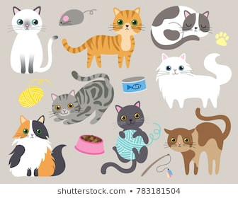 cute kitty cat vector illustration set with different cat breeds toys and food