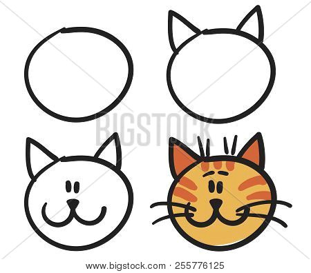 teach your child how to draw the face of a cartoon cat vector