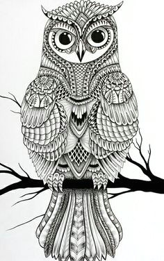 owl adult coloring owl coloring pages mandala coloring pages coloring sheets coloring books