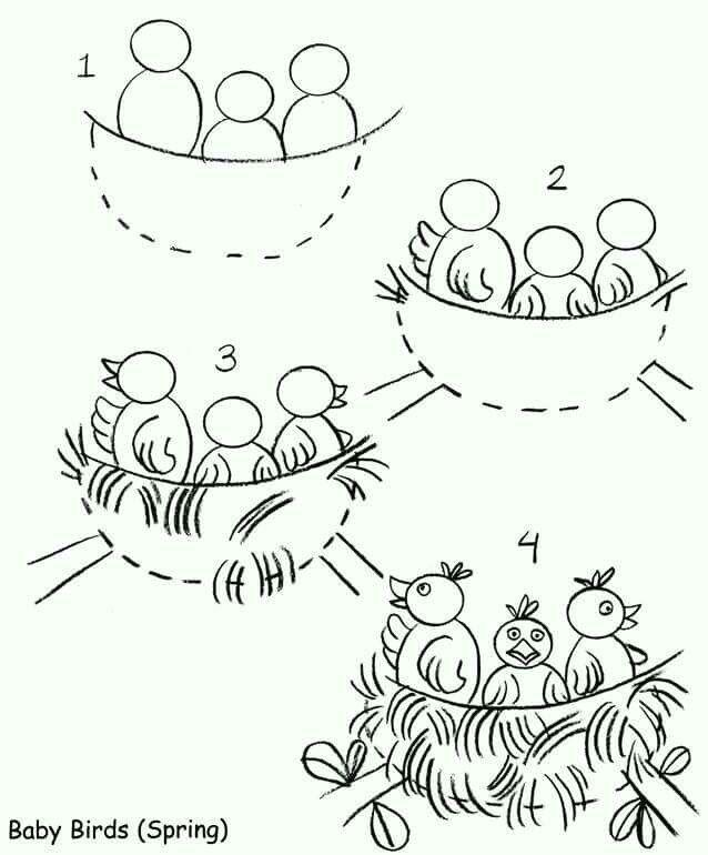 how to draw baby bird